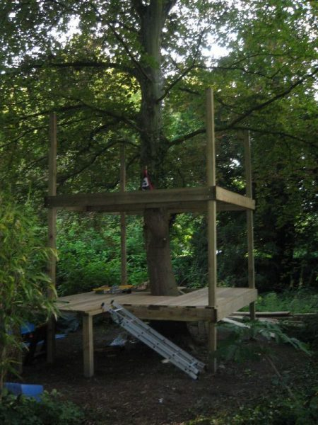 Tree House: Day 6, Adding Second Floor Frame