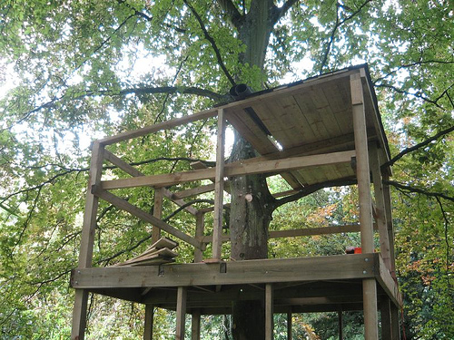 Treehouse Roofing
