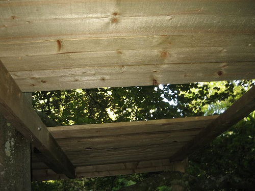 Treehouse Roof: Trapdoor